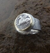pegasus ring7