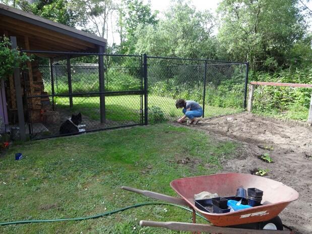 garden 2014
